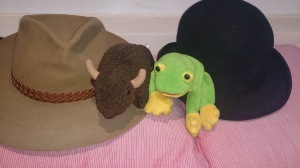 stetson, bison, frog, bowler