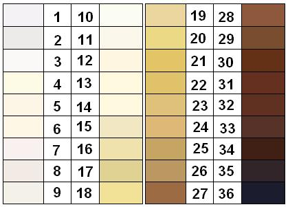 felix_von_luschan_skin_color_chart